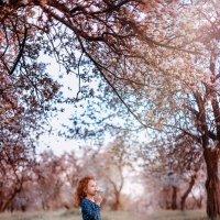 Мечта :: Наталья Шкроб (Семенюк)