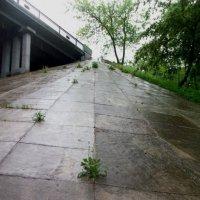 Гора упорства и любви к жизни :: Галина Бобкина