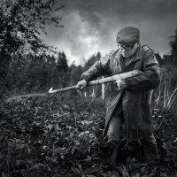 Садовод и сорняки :: Николай