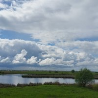 Река Теша. Май. :: Andrey Stolyarenko