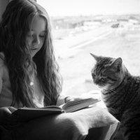 Жил-был кот Васька... :: Катерина Дмитриева