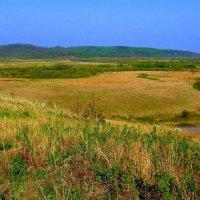 Речная долина :: Милла Корн