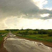 После дождя... :: марк