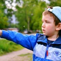 Мальчик с одуванчиком (2) :: Полина Потапова