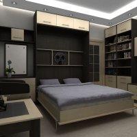 Откидная кровать-трансформер :: Александр Агафонкин