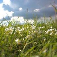 Весна :: Руслан