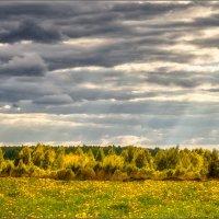 Солнечный дождь... :: Александр Никитинский