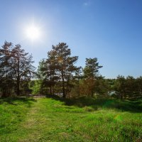 Окрестности села Любец Ковровского района Владимирской области :: Nadin Keara