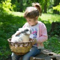 нежность к животным ) :: Райская птица Бородина