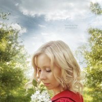 Яблони в цвету... :: Olga Rosenberg