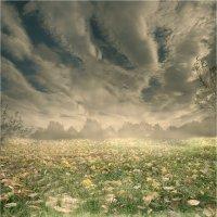 Волновая природа света :: 8ele8 Elena