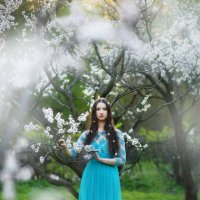Cherry :: Ludmila Zinovina