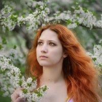 Vesna :: Ludmila Zinovina