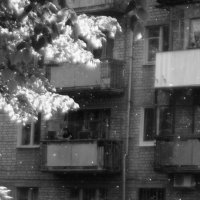 Лето пришло :: Ирина Сивовол