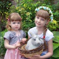 сестрёнки ) :: Райская птица Бородина