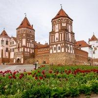 Замок Мир :: Павел Солопов