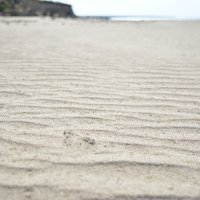 Песок... :: Ирина Лебедь