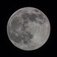 Луна :: Фазлиддин Инагамов