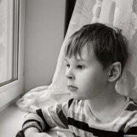 скучно дома... :: Анна Семенова