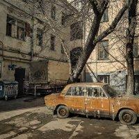 Не заведёт его бедный сосед... :: Ирина Данилова