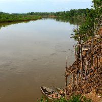 Тишина на реке,- нерест... :: Александр Облещенко