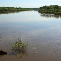 Урал река :: Александр Облещенко