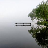 Висячий мостик :: Galina