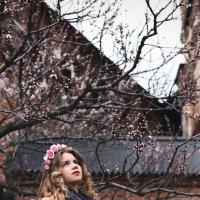 расцветай :: Алёна Андреяненкова