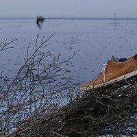 Море ушло-пора идти... :: Вальтер Дюк