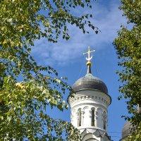 Храм Троицы Живоначальной в Хорошеве :: Александр Лебедевъ