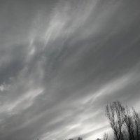 Ветер :: Николай Филоненко