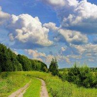 Вновь в неизвестность манят облака... :: Лесо-Вед (Баранов)