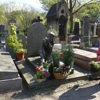 Могила Вацлава Нижинского на кладбище Монмартра :: Михаил Сбойчаков