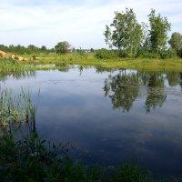 озеро в деревне :: Андрей Дружинин