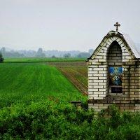 Путешествуя по Сербии :: Tatiana Belyatskaya