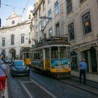 Трамвайчики Лиссабона :: Константин Шабалин
