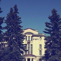 Солнечным днём :: Aнна Зарубина