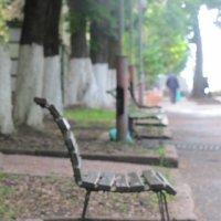 не только люди одиноки ,о и скамейки тоже ... :: Polina Pavliuk