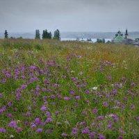 Дождливый день в Горицах :: Валерий Талашов