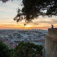 Закат над городом :: Константин Шабалин