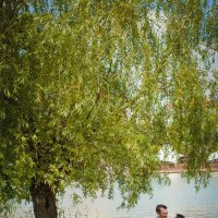 Почти летняя прогулка :: Андрей Молчанов