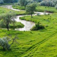 зеленая Долина :: Горный турист Иван Иванов