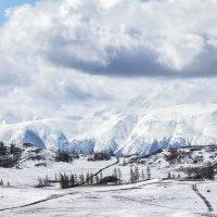После снегопада :: Галина Шепелева