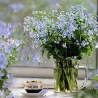 Незабудковое утро,в незабудковой весне :: galina tihonova