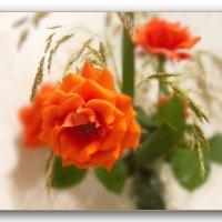 И я подумала о розах..... :: Людмила Богданова (Скачко)