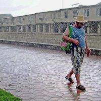 В дождь :: Владимир