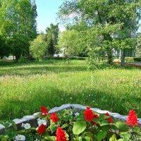 Весенний парк :: Лидия (naum.lidiya)