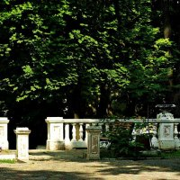 балюстрада в старом парке :: Александр Корчемный