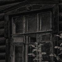 Окно :: Nn semonov_nn