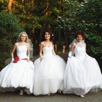 Сбежавшие невесты :: Мария Кутуева